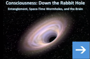 Entanglement, Space-Time Wormholes, and the Brain - John Hagelin