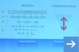 Is Consciousness the Unified Field? A Field Theorist's Perspective